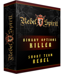 Short Term Rebel Software Box